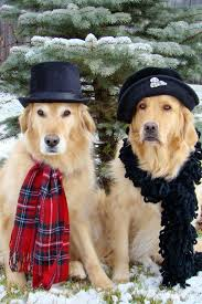 an old fashioned christmas tyler and brie santa paws