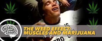 Weed Smoking Meme - the weed effect muscles and marijuana generation iron