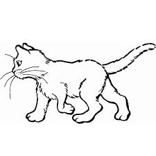 coloriage chat à colorier dessin à imprimer dessin pinterest