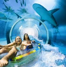 serpent slide atlantis paradise island harborside resort photo
