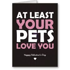 anti s day cards at least your pets you valentinesday valentinecards