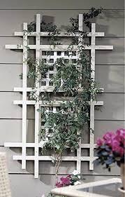 Garden Trellis Design by Best 25 Trellis Ideas Ideas On Pinterest Trellis Flower Vines