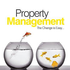 property management u2013 brampton real estate estate agent in hendon