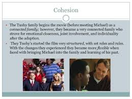 The Blind Side Book Summary Sparknotes Family Collage The Blind Side