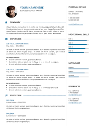 professional resume template free professional resume template