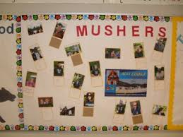 Bulletin Board Ideas – Iditarod