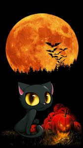 halloween cats background 218 best wallpapers images on pinterest wallpaper backgrounds