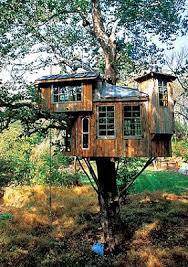Amazing and Awesome Tree Houses  Now Thats Nifty