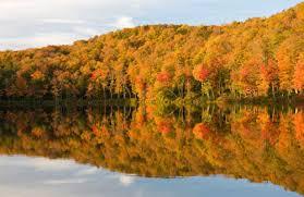 6 fall foliage drives england u2013 fodors travel guide