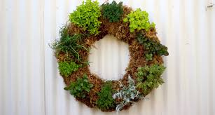 herb wreath how to make an herb wreath