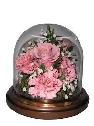 Flowers In Longmont Co - flower delivery longmont co the best flower in 2017