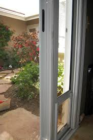 Glass Door Weatherstripping by Pet Door Weather Stripping Dog Door U0026 Cat Door Parts