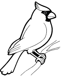 free printable coloring pages birds u2013 corresponsables co