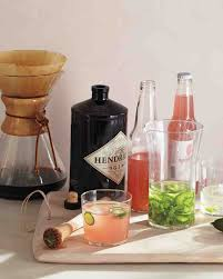 Party Pitcher Cocktails - best 25 grapefruit soda ideas on pinterest alcoholic drinks