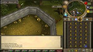 party hat buy cheap runescape 3 gold safe fast 2015