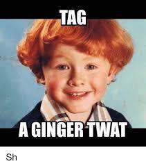 Ginger Memes - 25 best memes about ginger meme ginger memes