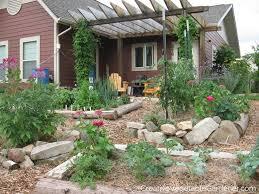 creative vegetable gardener stop tilling your vegetable garden