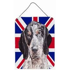 bluetick coonhound reviews check price bluetick coonhound with english union jack british