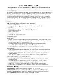 sle resume for customer service executive skills assessment customer service skills exles for resume