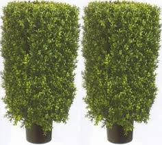 artificial boxwood shrubs artificial topiary with lights