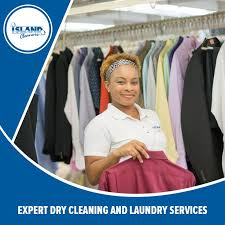 Barnes Dry Cleaners Best 25 Laundry Delivery Service Ideas On Pinterest Laundry