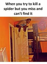 I Tried Killing A Spider - 25 best memes about kill a spider kill a spider memes