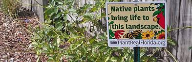plant real florida bring your landscape to life with native plants