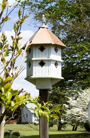 attracting birds to your backyard realty d u0027elia group blog