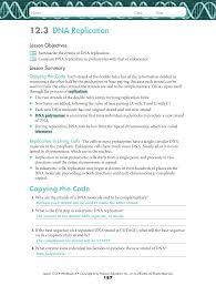 dna replication activity worksheet worksheets