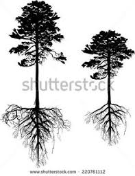 collection of trees with roots stock vector tattoo pinterest
