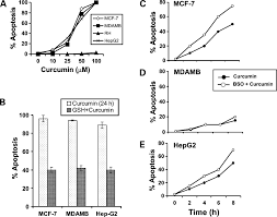 effect of curcumin on normal and tumor cells role of glutathione