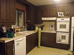 1960s Kitchen by Painted Black Kitchen Cabinets Pictures In Mobile Homes U2014 Kitchen