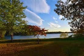 free photo tree lake sunset autumn sky free image on