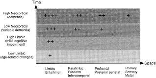neuroplasticity failure in alzheimer u0027s disease neuron