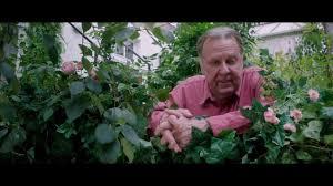 beautiful garden movie this beautiful fantastic official trailer 2017 fantasy drama