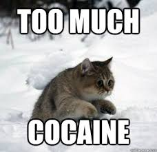 So Much Cocaine Meme - too much cocaine misc quickmeme
