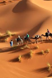 old spinifex rings little sandy desert australia wallpapers 92 best deserts images on pinterest deserts asia and sands