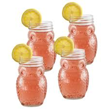 set of 4 owl glass mason jars pfaltzgraff