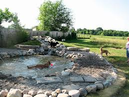 Dog Backyard Playground by Built To Be A Pond For Dogs Great Planning Dream House