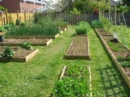 Vegetable Garden Bed Design by Basic Vegetable Garden Garden Ideas
