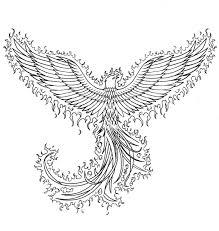 drawing of the phoenix bird phoenix bird ink line art pictures