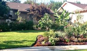 Urban Garden Woodland Hills - permaculture consulting woodland hills california