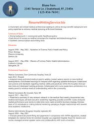 Best Resume Executive Summary by Local Resume Writers Free Resume Example And Writing Download