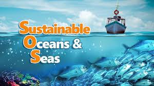 sustainable oceans u0026 seas full video youtube