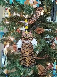 bengal cat angel ornament cat angel cat gifts