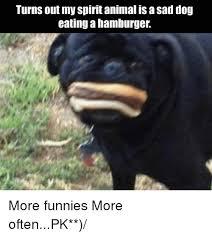 Sad Dog Meme - turns out my spirit animal is a sad dog eating a hamburger more