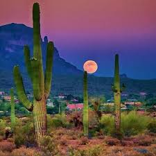 Arizona landscapes images 30 best arizona landscape images arizona usa jpg