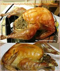 top 10 cheesecloth turkey posts on