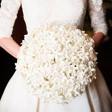 stephanotis flower best 25 stephanotis bridal bouquet ideas on