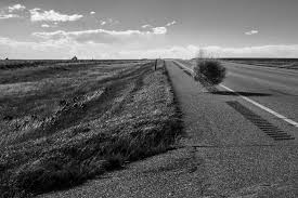 tumbleweed skalte images sue kaltenbach photography